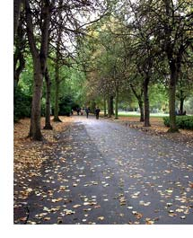 St Stephens Green in Autumn